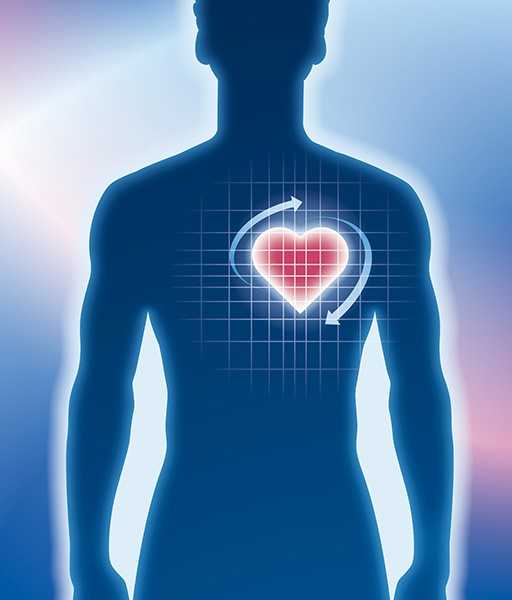 cardiology blue figure with red heart-1.jpg